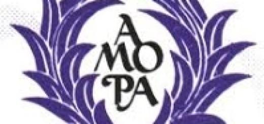 Amopa logo