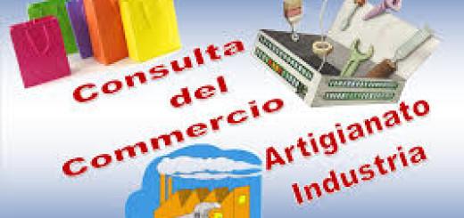 CONSULTA COMMERCIO ARTIGIANATO INDUSTRIA IMMAGINE 1
