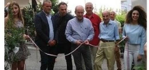 Inaugurazione L'Albero delle meraviglie immagine 3