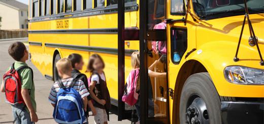 Trasporto scolastico immagine 3