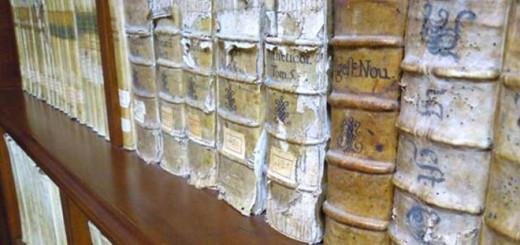 biblioteca-diocesana-sora-immagine-1