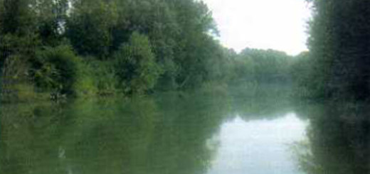 fiume-sacco-immagine-5