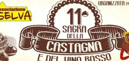 sagra-della-castagna-e-del-vino-rosso-immagine-3