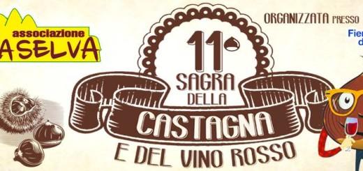 sagra-della-castagna-e-del-vino-rosso-immagine-5