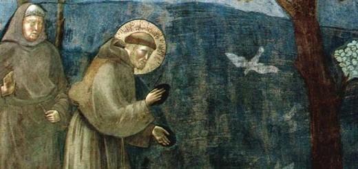 immagine-san-francesco-dassisi-immagine-3
