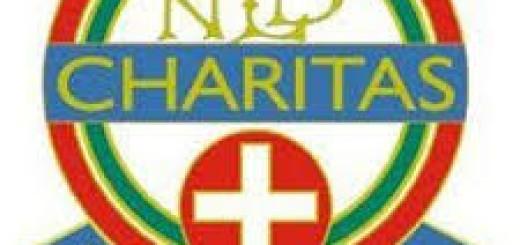 Charitas e Unitalsi immagine 99