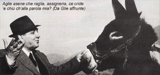 Riccardo Gulia immagine 99