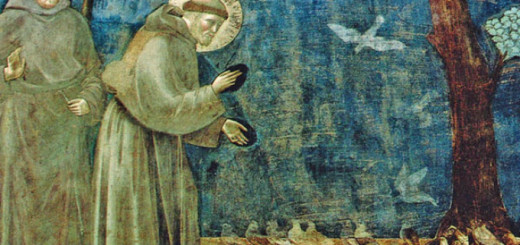 San Francesco - Il Cantico delle Creature immagine 99