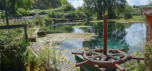 riserva lago di Posta Fibreno immagine 3
