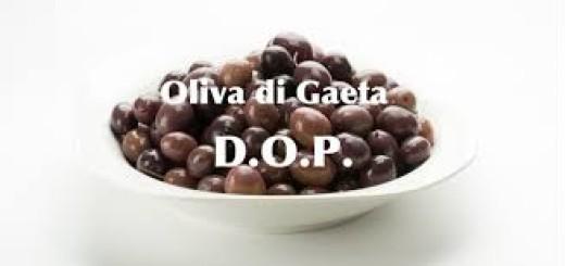 Oliva di Gaeta d.o.p. immagine 99