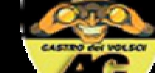 Logo Ac Castro dei Volsci immagine 5