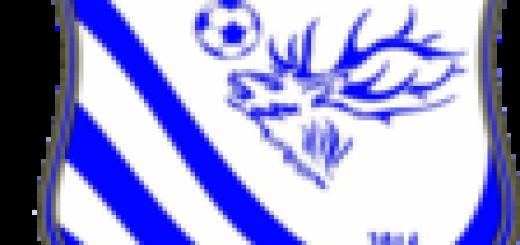 Logo Atletico Cervaro immagine 5