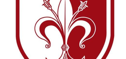Logo Ferentino Calcio immagine 5