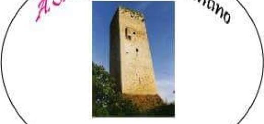 Associazione La Torre Ferentino immagine 5