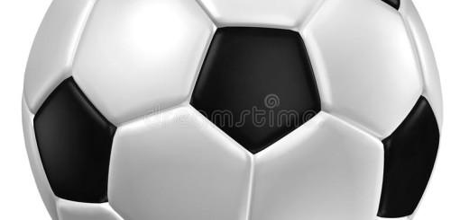 pallone di cuoio immagine 1