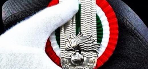 Arma dei Carabinieri logo immagine 5