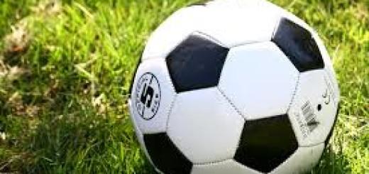 pallone da calcetto immagine 5