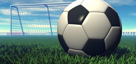 Pallone di cuoio immagine 5