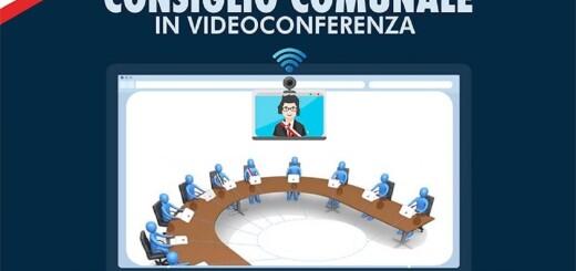 Seduca consiliare in videconferenza immagine 1